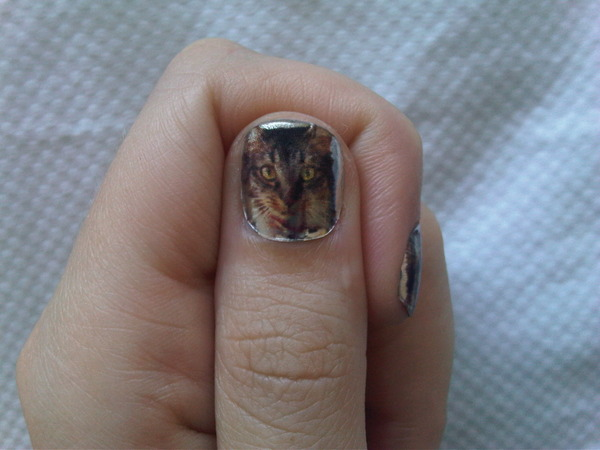 Katy-Perry-cat-nail-polish