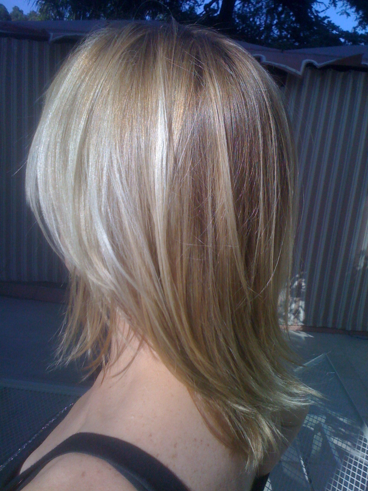 Alfredo-Argyle-Salon-blonde-hair-color